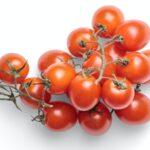 Grappolo di pomodorini confit su sfondo bianco